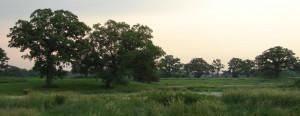 paradise valley, dousman, WI, DNR, Wildlife Area